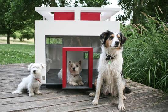 casa-para-perro-con-decoracion-05
