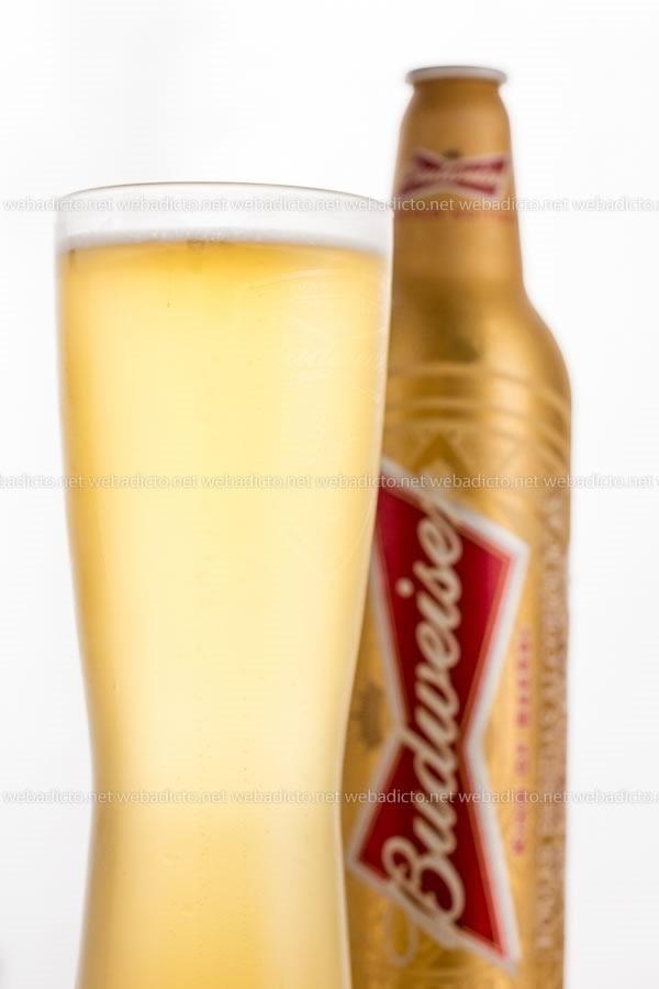 cerveza budweiser-4234