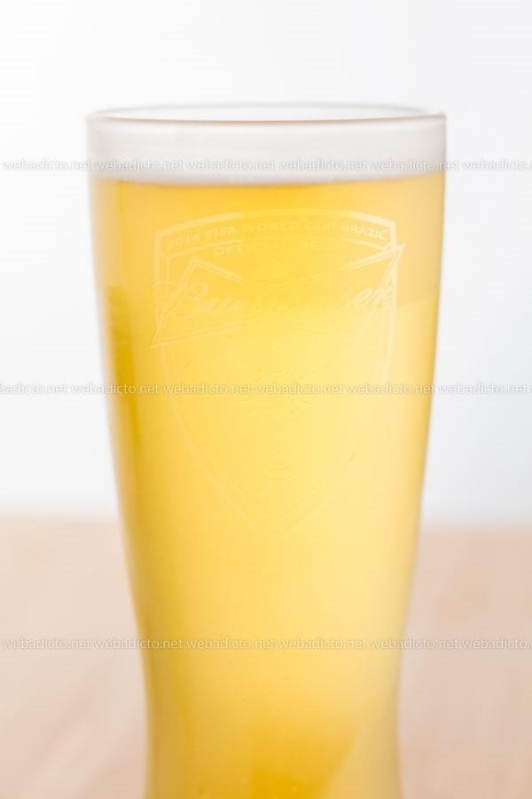 cerveza budweiser-4256
