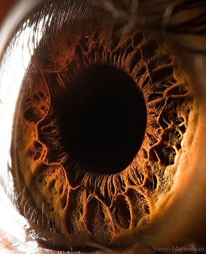 fotos-macro-ojos-suren-manvelyan-02