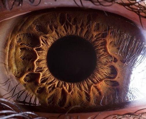 fotos-macro-ojos-suren-manvelyan-06