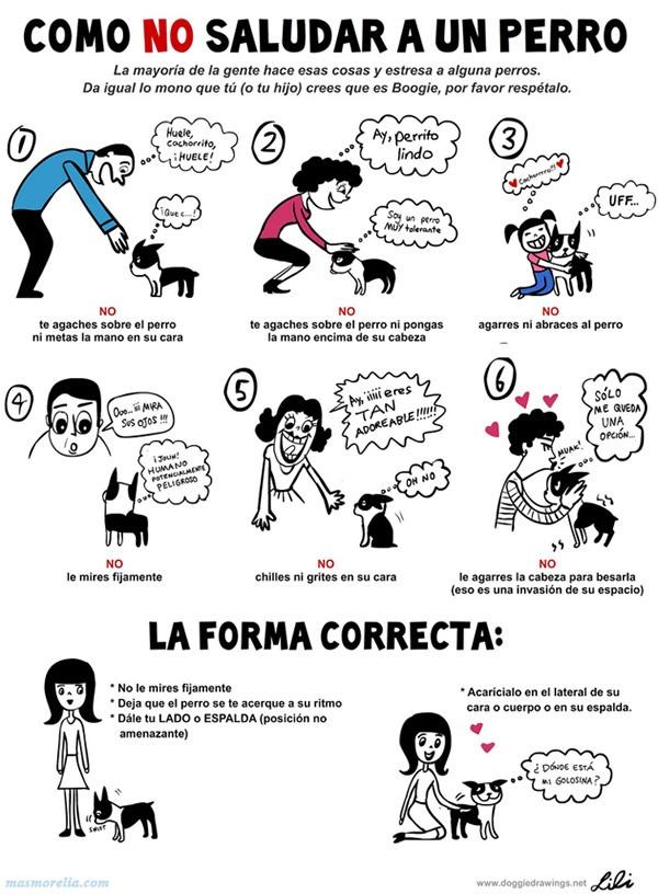 interpretacion-lenguaje-perros-infografia-como-saludar