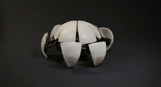 morphex-robot-esfera-camina