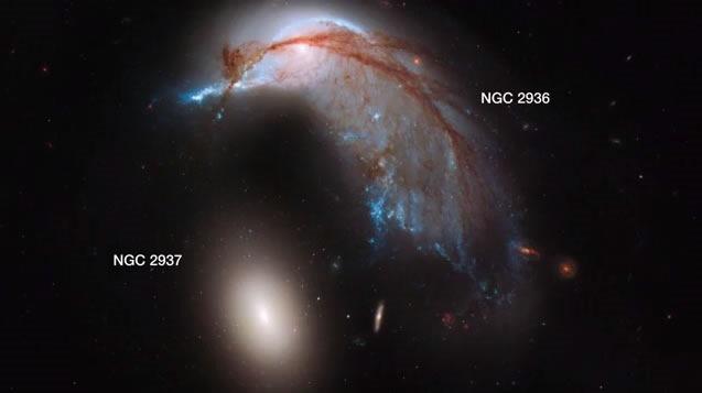 nasa-descubre-dos-galaxias-que-se-asemejan-a-un-pinguino-y-un-huevo