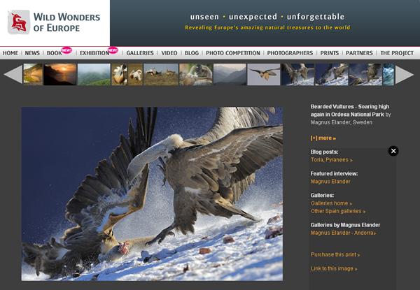 wild-wonders-of-europe01
